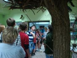 Gimnazjaliści w arboretum w Rogowie_8